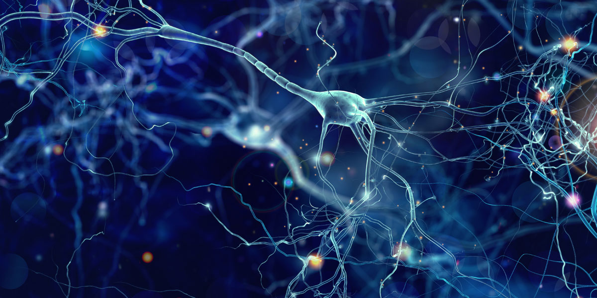 Autonomous neural network launches globally from Australia
